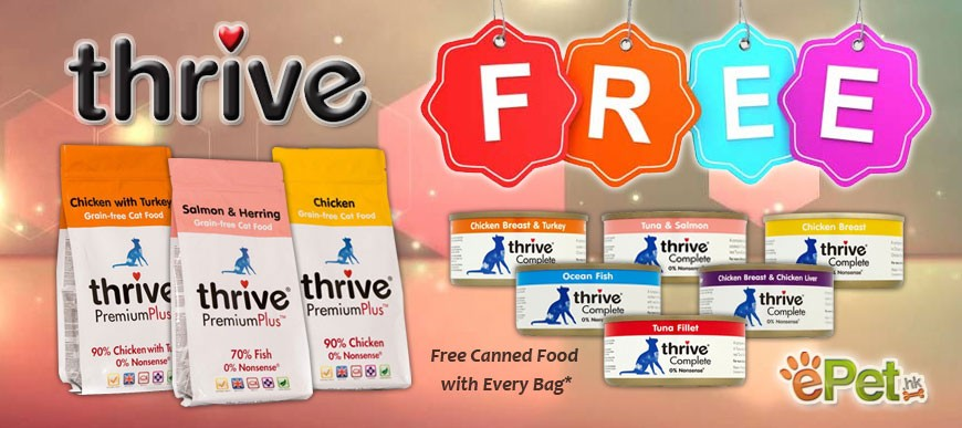 Thrive Promotion