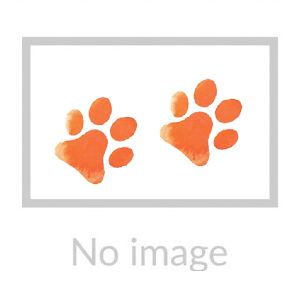 EZYDOG - Quick Fit Dog Harness (M - Orange)
