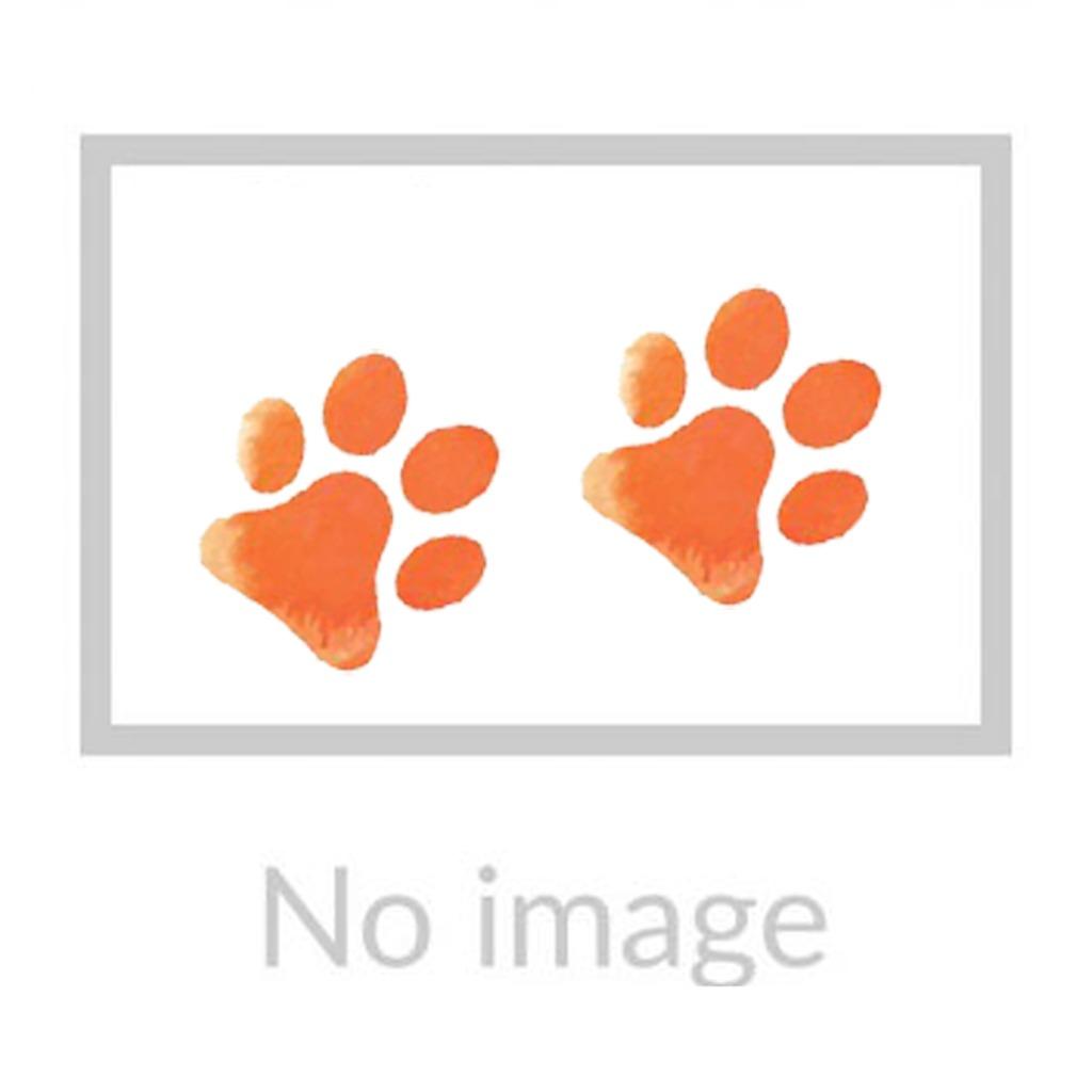 Orange Poodle Print Cushion