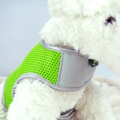 Crazy Paws Airmesh Harness (Green - Medium)